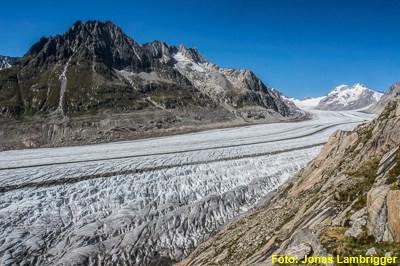 Klettergurt Für Gletscher : Gletscher trekking grosser aletschgletscher bächli bergsport ag