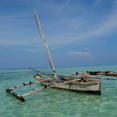 SANSIBAR. Meditatives Wanderseminar am Strand von Sansibar und Retreat