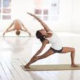 Hatha Vinyasa Yoga Online Freitag 18-30 Uhr