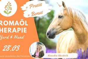 Aromaöl Therapie für Pferd und Hund