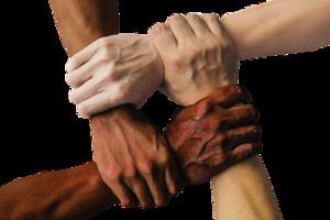 Fit für Vielfalt