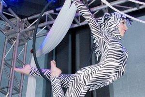 Mi Monatskurs Trapez-Hoop Intermediate Advanced Figures