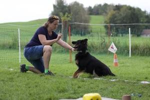 Webinar - How dogs learn