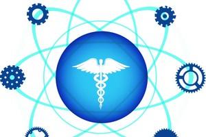 Grundlagen der Heptopathie