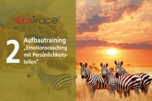 emTrace® Aufbautraining (Level 2)