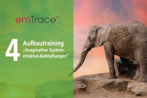 emTrace® Aufbautraining (Level 4)