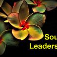 Soulful Leadership - Ein fachliche Weiterbildung über die Führung von morgen
