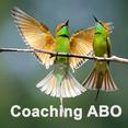 Coaching ABO - Resilienz und positive Führung