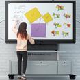 Arbeiten mit interaktiven Panels von Promethean - Basisschulung