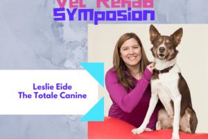 Workshops Leslie Eide