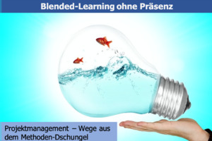 Projektmanagement - Wege aus dem Methodendschungel (Online-Learning)