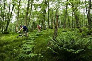Winti Downhill mit dem E-MTB