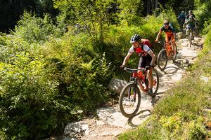 Halbtages Tour Bike Kingdom