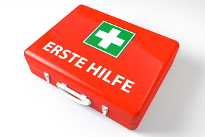 Erste Hilfe Kurs 9UE