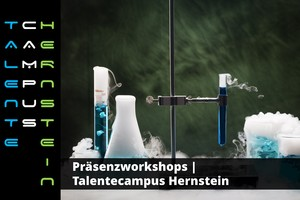 Präsenzworkshops | Talentecamps Hernstein