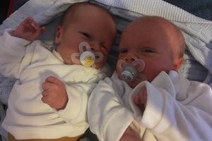 Online-Elternschule live 26.01. Die Babys sind da!