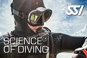 Science of Diving 081