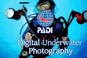 DUP-20707x | Digitale Unterwasser Fotografie allgemein