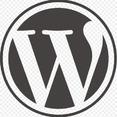 Homepages oder Blogs mit WordPress erstellen Einführung