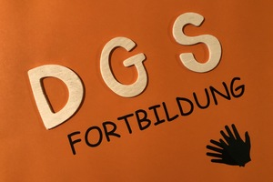 DGS-Grammatik per Zoom-Videochat